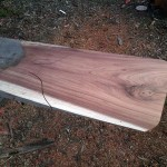 Blackwood slab for making pizza and bread peel.