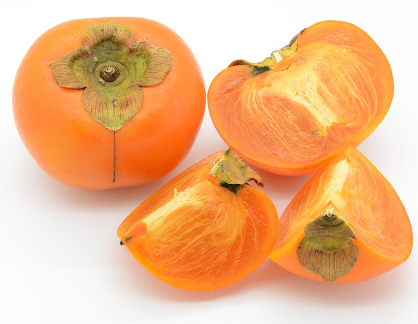 persimmon fruit quotes