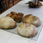 I baked these amazing breads and it was very easy.