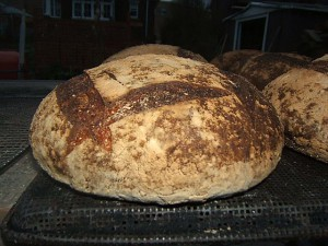 Baking sourdough breads in quantity.