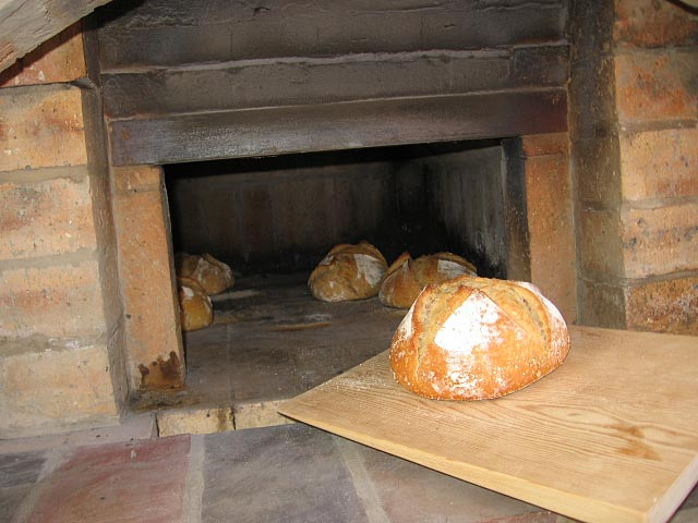 Small Oven 24 Wide With 16 Vault Height