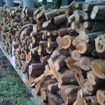 The ovens firewood storage.