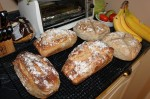 whole wheat breads and rye breads